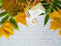 De witte bakstenen muur van de bladerenherfst, parels, parels, Stock Fotografie