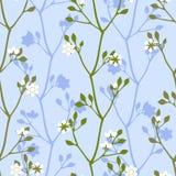 De witte bloesem van de bloemenlente Stock Afbeeldingen
