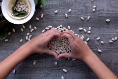 De witte bonen en de vrouwelijke handen symboliseren het gezonde eten Stock Afbeeldingen