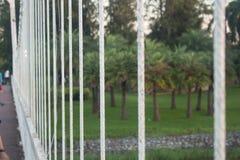 De witte brug van de staalkabel royalty-vrije stock fotografie