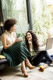 De witte en Afrikaanse Amerikaanse vrouwen zitten thuis en gebruikend laptop royalty-vrije stock fotografie