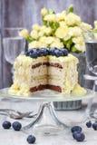 De witte en donkere die cake van de chocoladelaag met bosbessen wordt verfraaid Royalty-vrije Stock Foto's