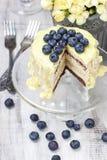 De witte en donkere die cake van de chocoladelaag met bosbessen wordt verfraaid Stock Foto's