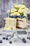 De witte en donkere die cake van de chocoladelaag met bosbessen wordt verfraaid Royalty-vrije Stock Afbeeldingen