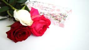 De Witte groetkaart, nam toe, rood nam toe, roze nam op geïsoleerd toe Stock Afbeeldingen