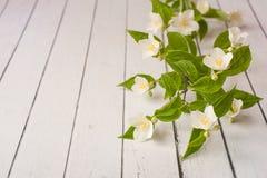 De witte jasmijnbloemen liggen op een houten achtergrond De uitnodigingskaart van het huwelijk Ruimte voor tekst en ontwerp royalty-vrije stock foto's