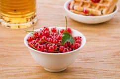 De witte kom van rode aalbes met gebakjes en thee/het wit werpt van rode aalbes met gebakjes en thee Selectieve nadruk stock foto's