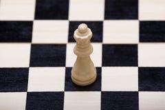 De witte koningin op het schaakbord Royalty-vrije Stock Fotografie