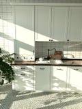 de witte laconieke keuken Skandinavische stijl met een mozaïek op de vloer en een zwarte onttrekken en installaties in het binnen royalty-vrije stock afbeelding