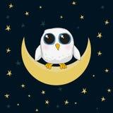 De witte leuke uil zit op de maan bij nacht Royalty-vrije Stock Foto