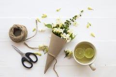 De witte lokale flora van de bloemenjasmijn van Azië op wit royalty-vrije stock afbeeldingen