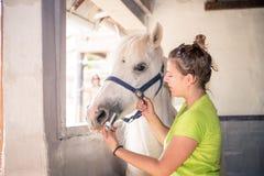 De witte merrie krijgt een behandeling van een jonge dierenarts Stock Foto's