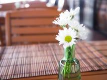 De witte Nevelchrysant in vaas werd verfraaid op houten lijst Stock Foto