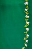 De witte plastic bloem is verticale lijn Stock Foto