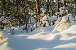 De witte pluizige sneeuw behandelde de grond stock afbeelding