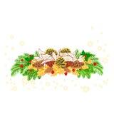 De witte poinsettia van de Kerstmisdecoratie met diverse denneappelsvector Stock Foto's