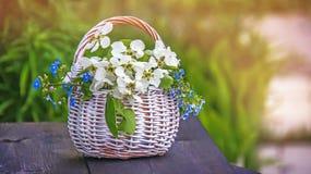De witte rieten mand bloeit vergeet-mij-nietjes en Apple op een groene natuurlijke achtergrond in Zonnige dag De ruimte van het e royalty-vrije stock foto's