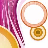 De witte roze sinaasappel van de cirkel Stock Afbeeldingen