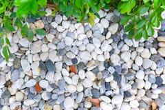 De witte schone ronde textuur van de Kiezelsteensteen Stock Foto's