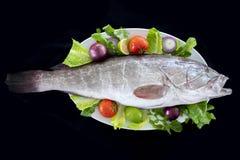 De witte tandbaarsvissen met rakettenbladeren, tomaten, uien en citroen dienden op plaat stock foto's