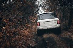 De witte tribune van Rover Range Rover van het autoland op platteland off-road bij dramatische wolkendag Stock Foto's
