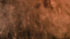 De witte verf giet langzaam in het water op een zwarte achtergrond, rook in dark stock videobeelden