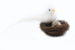De witte vogel is kroost Royalty-vrije Stock Foto's