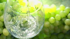 De witte wijn die pored in een glas tegen bos van groene druiven zijn Wijnbereidingsconcept Super langzame motie dichte omhooggaa stock footage