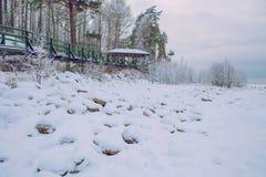 De witte winter, mist en bomen Stille en zonnige ochtend Stock Foto