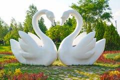 De witte zitting van het twee zwanenstandbeeld samen bij een openbaar park stock afbeeldingen