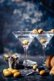 De wodka martini, jenever tonische cocktail diende in restaurant, bar en bar Lang drink cocktailconcept Stock Afbeeldingen