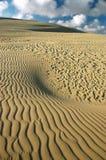 De woestijn, duin, schuurt grafisch. Stock Fotografie