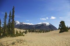 De woestijn en de bergen van Carcross Royalty-vrije Stock Afbeelding
