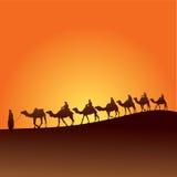 De woestijn en de kamelen van de Sahara vector illustratie