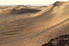 De Woestijn Marokko van de Sahara Royalty-vrije Stock Foto