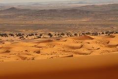 De Woestijn Marokko van de Sahara Stock Afbeeldingen