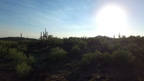 De woestijn openbaart van bezige weg stock videobeelden