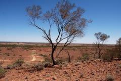 De Woestijn van Alice Springs Stock Afbeeldingen