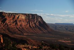 De woestijn van Arizona Stock Foto's