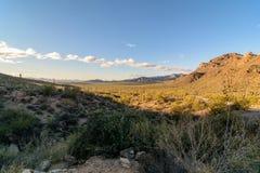 De woestijn van Arizona Sonoran bij zonsondergang royalty-vrije stock foto's