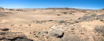 De woestijn van de Kust van het Skelet royalty-vrije stock foto's