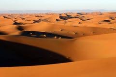 De Woestijn van de Sahara Stock Foto's