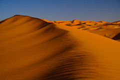De Woestijn van de Sahara stock afbeelding