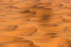 De Woestijn van de Sahara Stock Foto