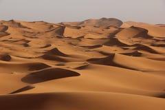 De Woestijn van de Sahara royalty-vrije stock fotografie