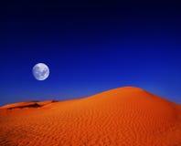 De Woestijn van de Sahara bij nacht Stock Afbeeldingen