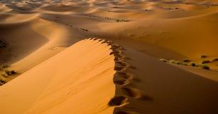 De woestijn van de Sahara in Marokko royalty-vrije stock fotografie