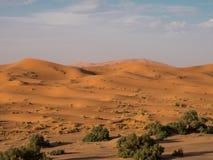 De woestijn van de Sahara, Marokko Stock Fotografie