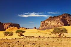 De Woestijn van de Sahara, Tadrart, Algerije Stock Afbeelding