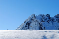 De woestijn van de sneeuw Stock Foto